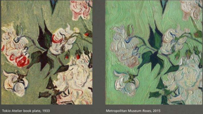 The fading of Van Gogh's roses over time.